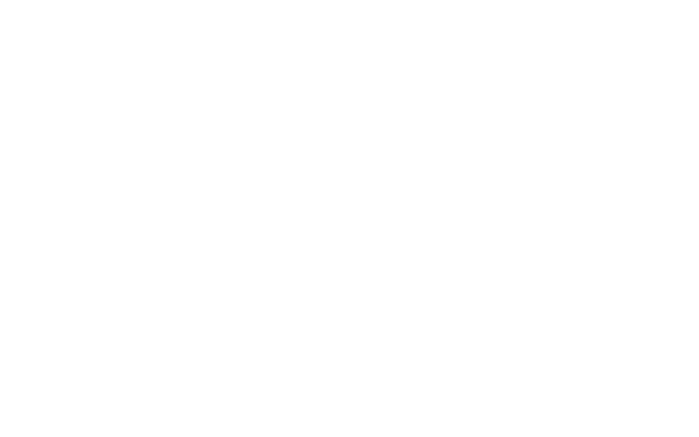 exceptional page speed